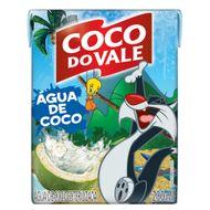 Agua-de-Coco-do-Vale-Looney-200ml-204872