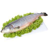 peixe-salmao-congelado-kg-4714